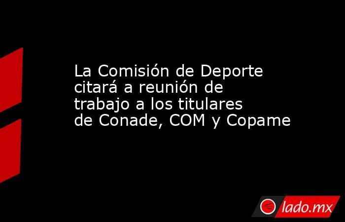 La Comisión de Deporte citará a reunión de trabajo a los titulares de Conade, COM y Copame. Noticias en tiempo real