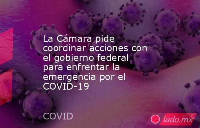 La Cámara pide coordinar acciones con el gobierno federal para enfrentar la emergencia por el COVID-19. Noticias en tiempo real