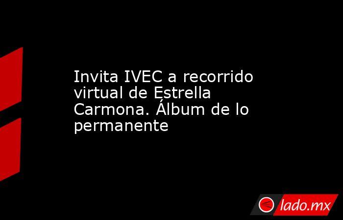 Invita IVEC a recorrido virtual de Estrella Carmona. Álbum de lo permanente. Noticias en tiempo real