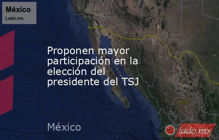Proponen mayor participación en la elección del presidente del TSJ. Noticias en tiempo real