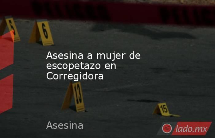 Asesina a mujer de escopetazo en Corregidora. Noticias en tiempo real