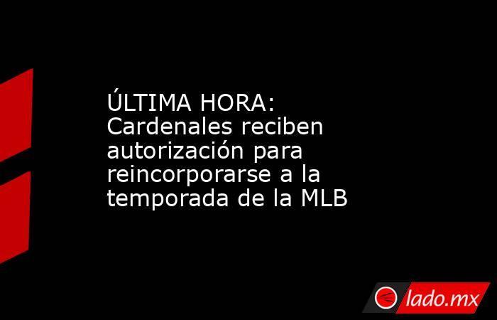 ÚLTIMA HORA: Cardenales reciben autorización para reincorporarse a la temporada de la MLB. Noticias en tiempo real
