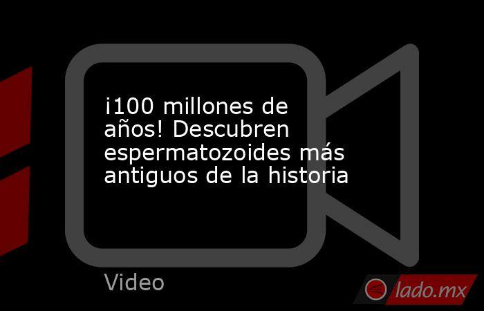 ¡100 millones de años! Descubren espermatozoides más antiguos de la historia. Noticias en tiempo real