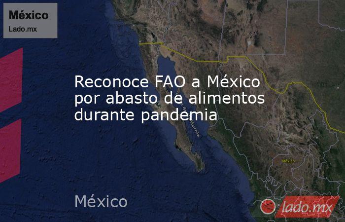 Reconoce FAO a México por abasto de alimentos durante pandemia. Noticias en tiempo real