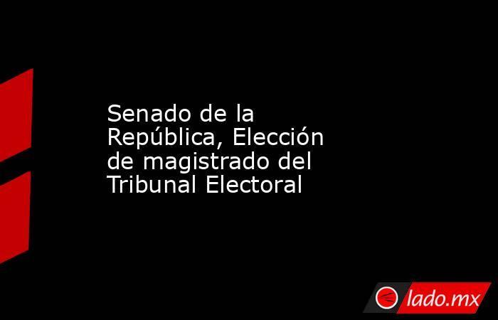 Senado de la República, Elección de magistrado del Tribunal Electoral. Noticias en tiempo real