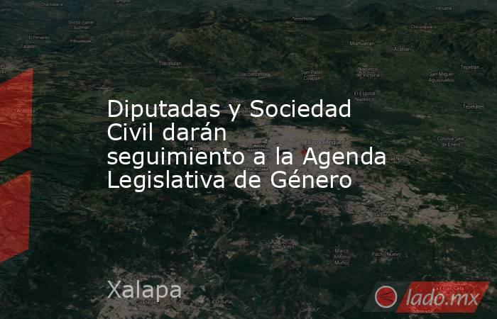 Diputadas y Sociedad Civil darán seguimiento a la Agenda Legislativa de Género. Noticias en tiempo real