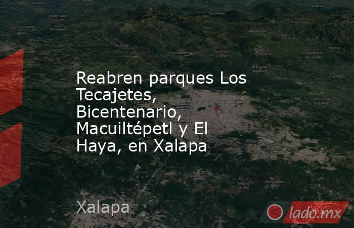 Reabren parques Los Tecajetes, Bicentenario, Macuiltépetl y El Haya, en Xalapa. Noticias en tiempo real