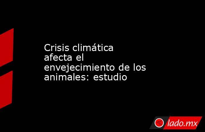 Crisis climática afecta el envejecimiento de los animales: estudio . Noticias en tiempo real