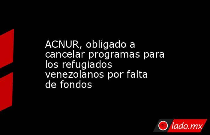 ACNUR, obligado a cancelar programas para los refugiados venezolanos por falta de fondos. Noticias en tiempo real
