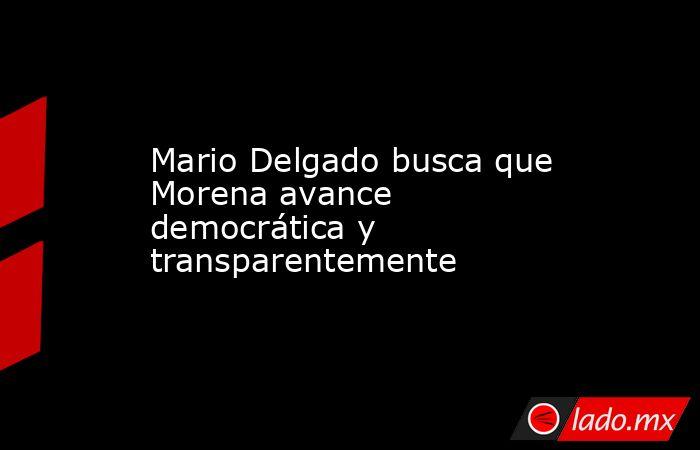 Mario Delgado busca que Morena avance democrática y transparentemente. Noticias en tiempo real