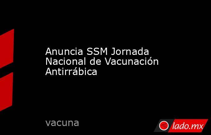Anuncia SSM Jornada Nacional de Vacunación Antirrábica. Noticias en tiempo real