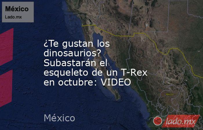 ¿Te gustan los dinosaurios? Subastarán el esqueleto de un T-Rex en octubre: VIDEO. Noticias en tiempo real