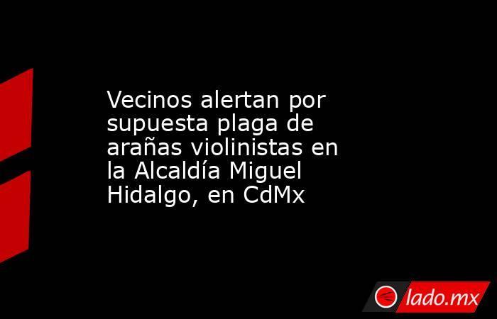 Vecinos alertan por supuesta plaga de arañas violinistas en la Alcaldía Miguel Hidalgo, en CdMx. Noticias en tiempo real