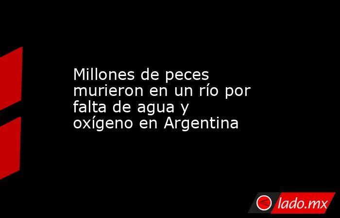 Millones de peces murieron en un río por falta de agua y oxígeno en Argentina. Noticias en tiempo real