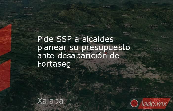 Pide SSP a alcaldes planear su presupuesto ante desaparición de Fortaseg. Noticias en tiempo real