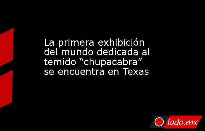 """La primera exhibición del mundo dedicada al temido """"chupacabra"""" se encuentra en Texas. Noticias en tiempo real"""