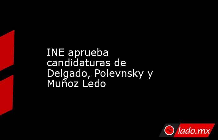 INE aprueba candidaturas de Delgado, Polevnsky y Muñoz Ledo. Noticias en tiempo real