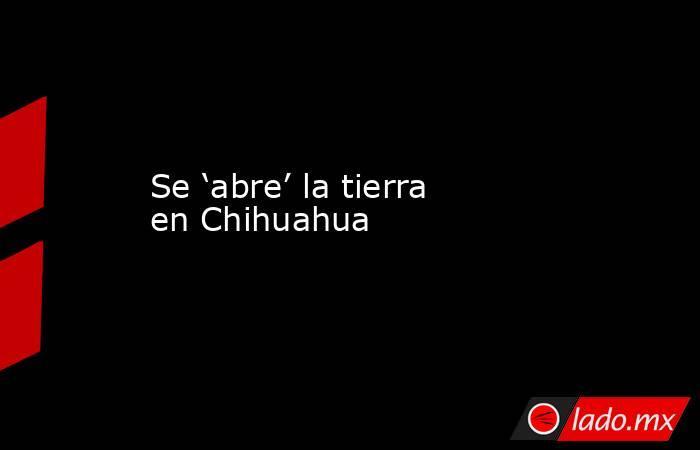 Se 'abre' la tierra en Chihuahua. Noticias en tiempo real