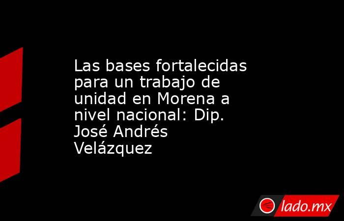 Las bases fortalecidas para un trabajo de unidad en Morena a nivel nacional: Dip. José Andrés Velázquez. Noticias en tiempo real