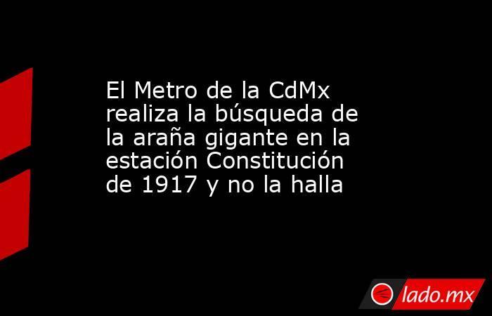 El Metro de la CdMx realiza la búsqueda de la araña gigante en la estación Constitución de 1917 y no la halla. Noticias en tiempo real