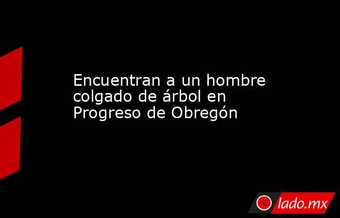 Encuentran a un hombre colgado de árbol en Progreso de Obregón. Noticias en tiempo real