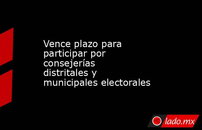 Vence plazo para participar por consejerías distritales y municipales electorales. Noticias en tiempo real