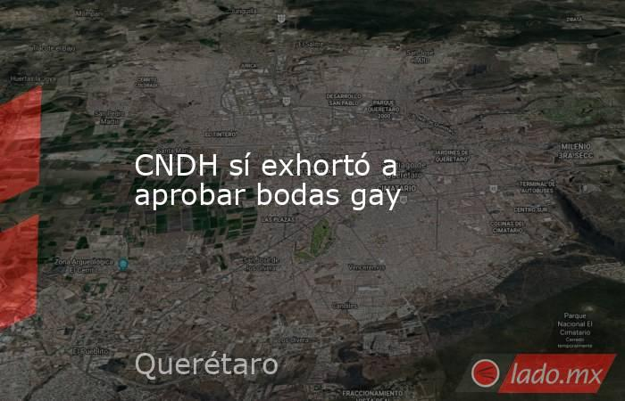 CNDH sí exhortó a aprobar bodas gay. Noticias en tiempo real