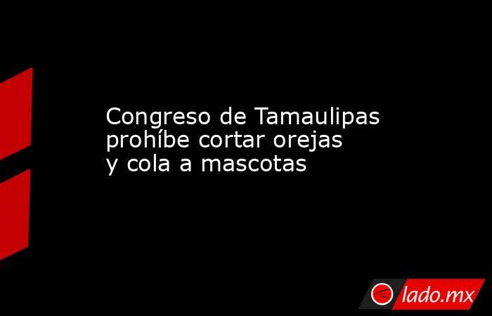 Congreso de Tamaulipas prohíbe cortar orejas y cola a mascotas. Noticias en tiempo real