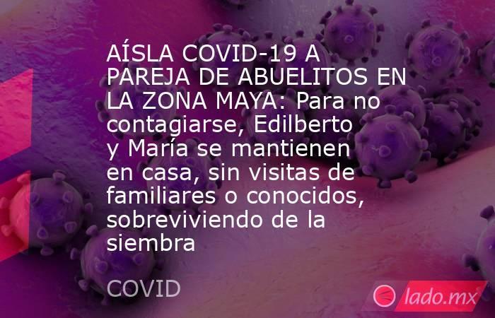 AÍSLA COVID-19 A PAREJA DE ABUELITOS EN LA ZONA MAYA: Para no contagiarse, Edilberto y María se mantienen en casa, sin visitas de familiares o conocidos, sobreviviendo de la siembra. Noticias en tiempo real