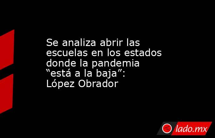 """Se analiza abrir las escuelas en los estados donde la pandemia """"está a la baja"""": López Obrador. Noticias en tiempo real"""