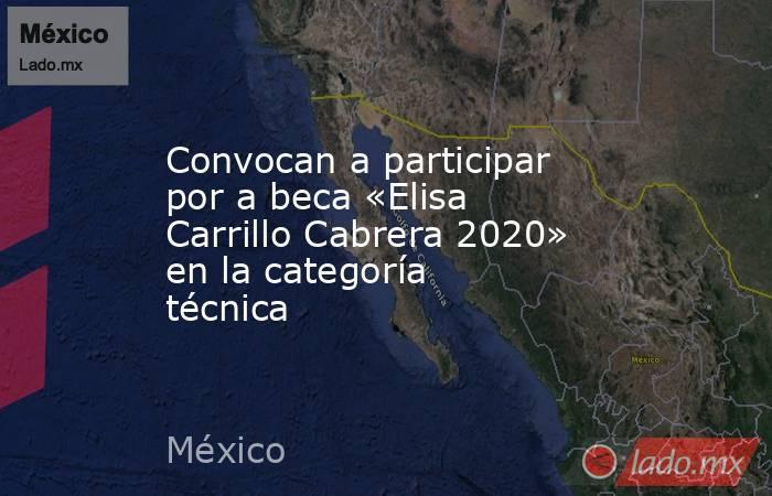 Convocan a participar por a beca «Elisa Carrillo Cabrera 2020» en la categoría técnica. Noticias en tiempo real