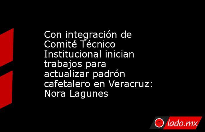 Con integración de Comité Técnico Institucional inician trabajos para actualizar padrón cafetalero en Veracruz: Nora Lagunes. Noticias en tiempo real