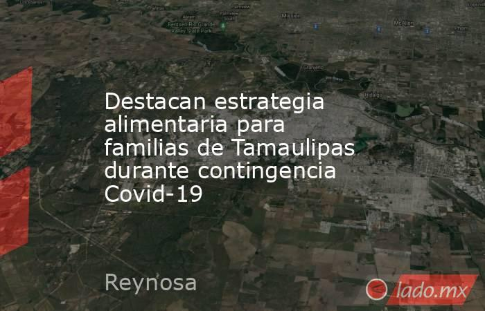 Destacan estrategia alimentaria para familias de Tamaulipas durante contingencia Covid-19. Noticias en tiempo real