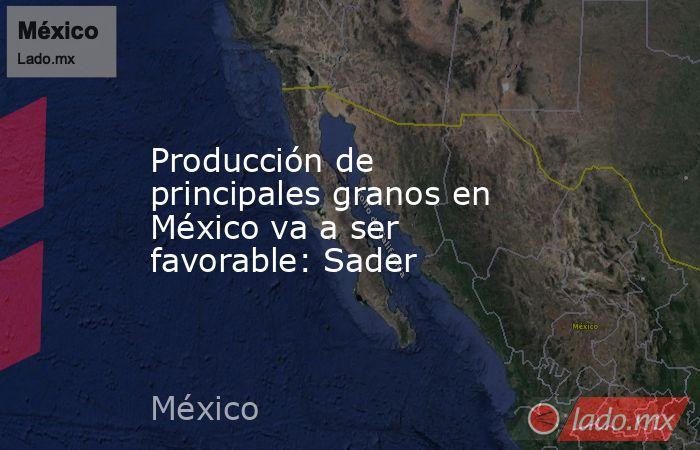 Producción de principales granos en México va a ser favorable: Sader. Noticias en tiempo real