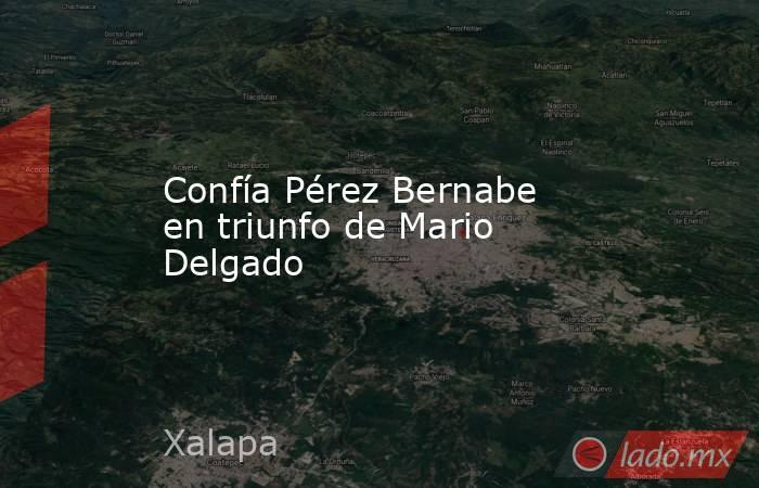Confía Pérez Bernabe en triunfo de Mario Delgado. Noticias en tiempo real