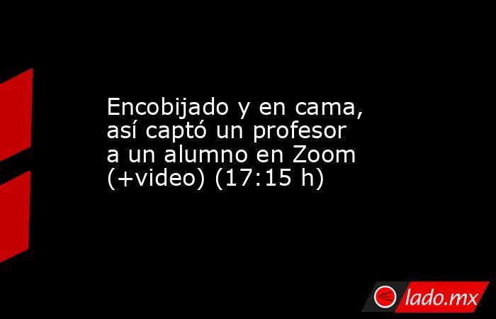 Encobijado y en cama, así captó un profesor a un alumno en Zoom (+video) (17:15 h). Noticias en tiempo real