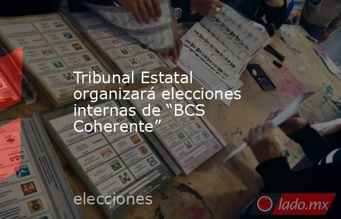"""Tribunal Estatal organizará elecciones internas de """"BCS Coherente"""". Noticias en tiempo real"""
