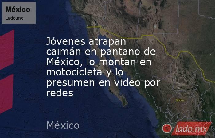 Jóvenes atrapan caimán en pantano de México, lo montan en motocicleta y lo presumen en video por redes. Noticias en tiempo real