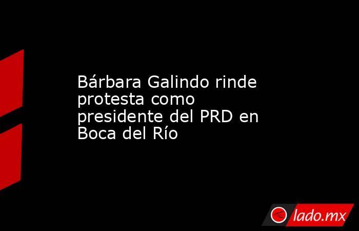 Bárbara Galindo rinde protesta como presidente del PRD en Boca del Río. Noticias en tiempo real