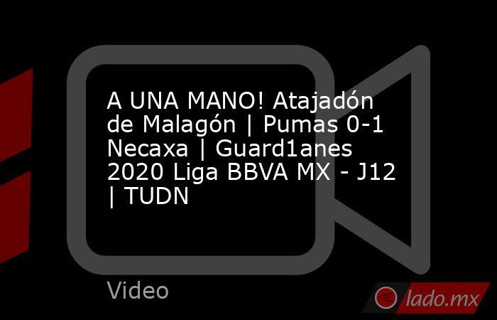 A UNA MANO! Atajadón de Malagón | Pumas 0-1 Necaxa | Guard1anes 2020 Liga BBVA MX - J12 | TUDN. Noticias en tiempo real