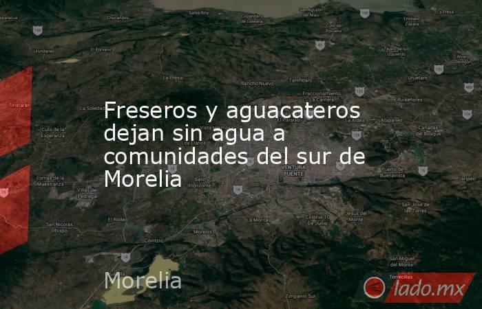 Freseros y aguacateros dejan sin agua a comunidades del sur de Morelia. Noticias en tiempo real