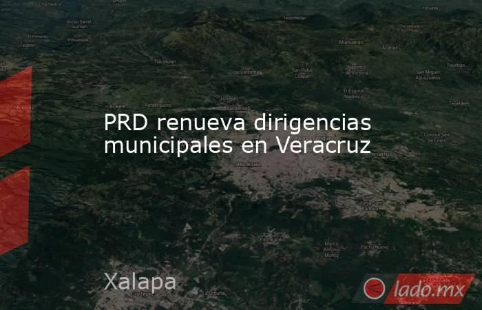 PRD renueva dirigencias municipales en Veracruz. Noticias en tiempo real