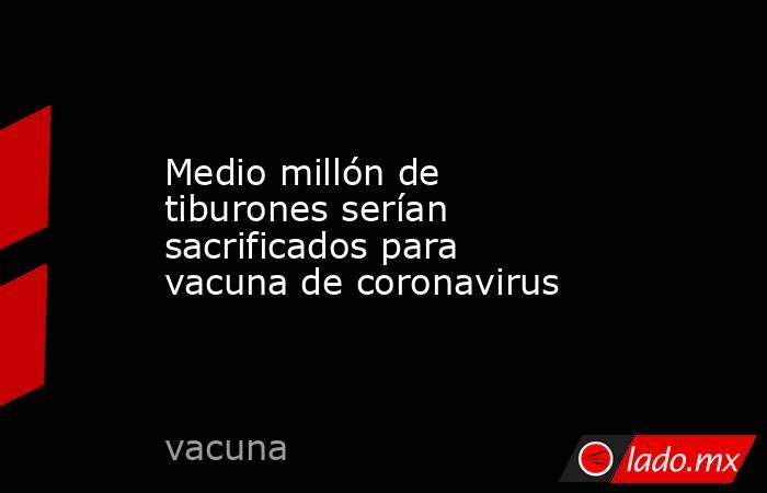 Medio millón de tiburones serían sacrificados para vacuna de coronavirus. Noticias en tiempo real
