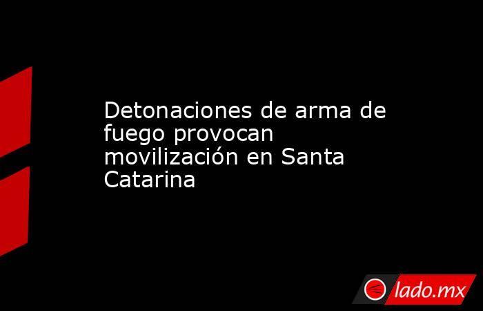 Detonaciones de arma de fuego provocan movilización en Santa Catarina . Noticias en tiempo real
