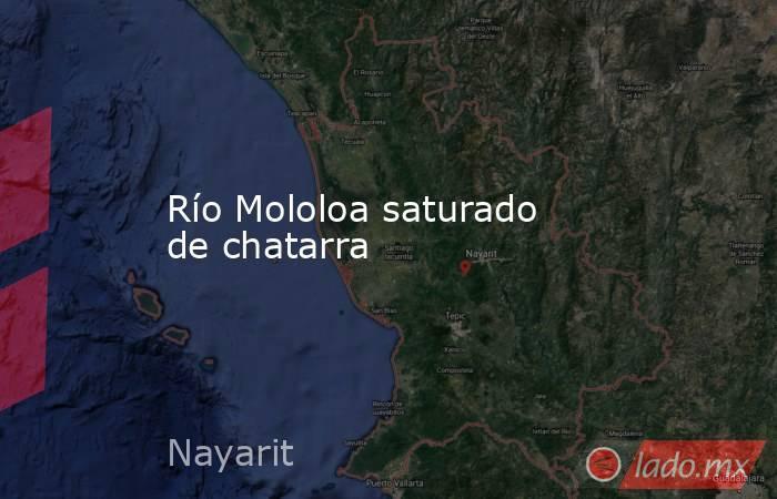 Río Mololoa saturado de chatarra. Noticias en tiempo real