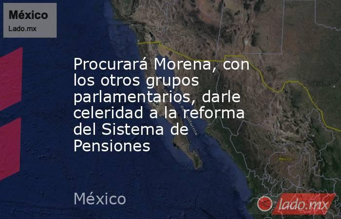 Procurará Morena, con los otros grupos parlamentarios, darle celeridad a la reforma del Sistema de Pensiones. Noticias en tiempo real
