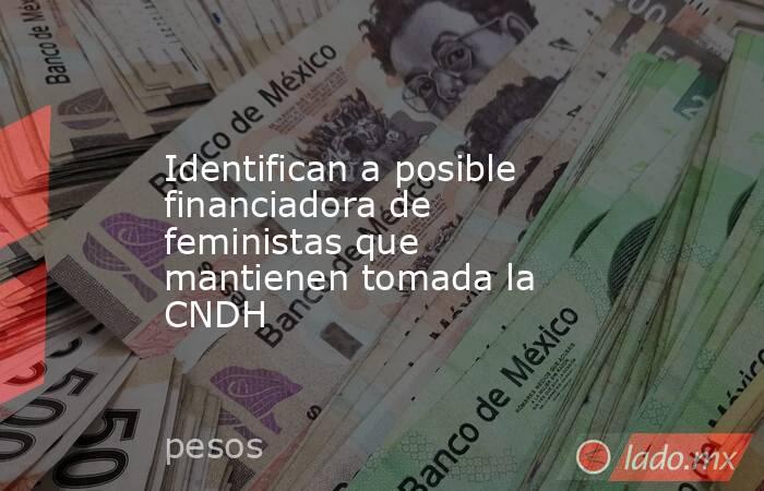 Identifican a posible financiadora de feministas que mantienen tomada la CNDH . Noticias en tiempo real
