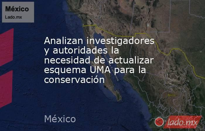 Analizan investigadores y autoridades la necesidad de actualizar esquema UMA para la conservación. Noticias en tiempo real