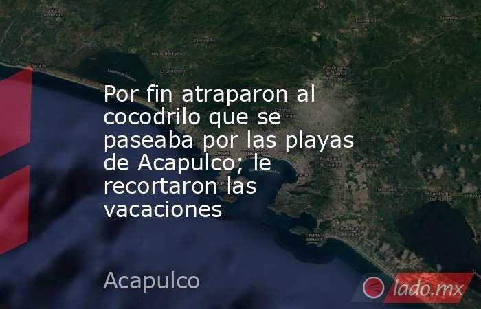 Por fin atraparon al cocodrilo que se paseaba por las playas de Acapulco; le recortaron las vacaciones. Noticias en tiempo real