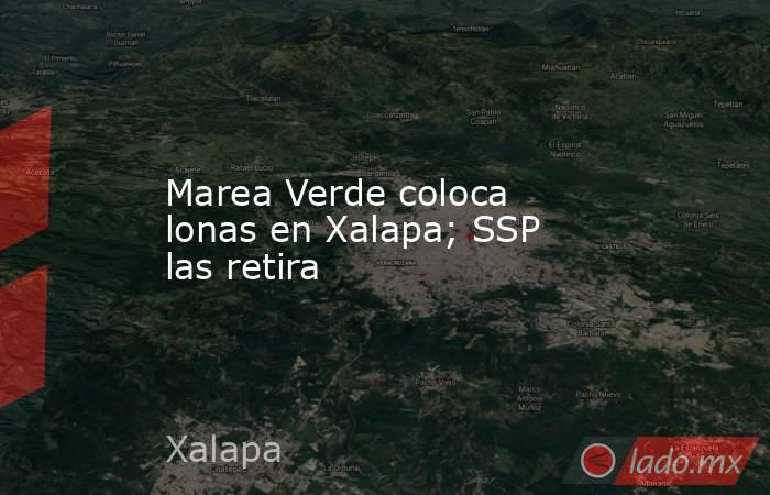 Marea Verde coloca lonas en Xalapa; SSP las retira. Noticias en tiempo real